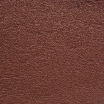 Zookbinders Burgundy leather cover