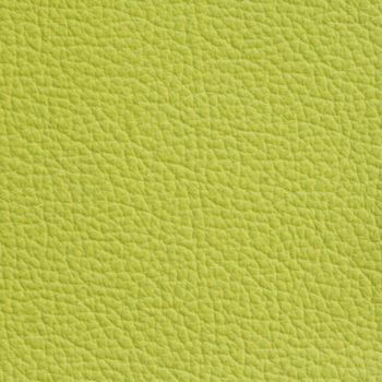 Zookbinders Lime glove leather cover material