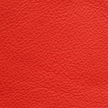 zookbinders red glove leather