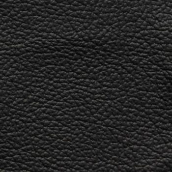 Zokbinders album - standard black leather cover
