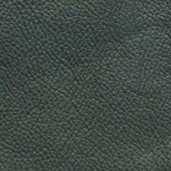 Zokbinders matted album - standard green leather cover