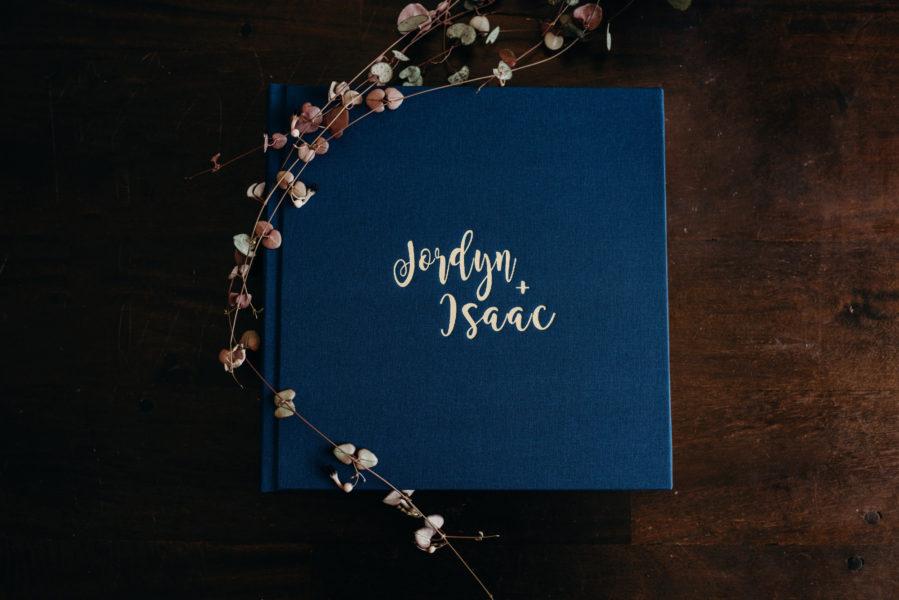 Vision Art Albums Fine Art Book