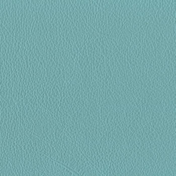 Finao Classic Leathers - Forget Me Not
