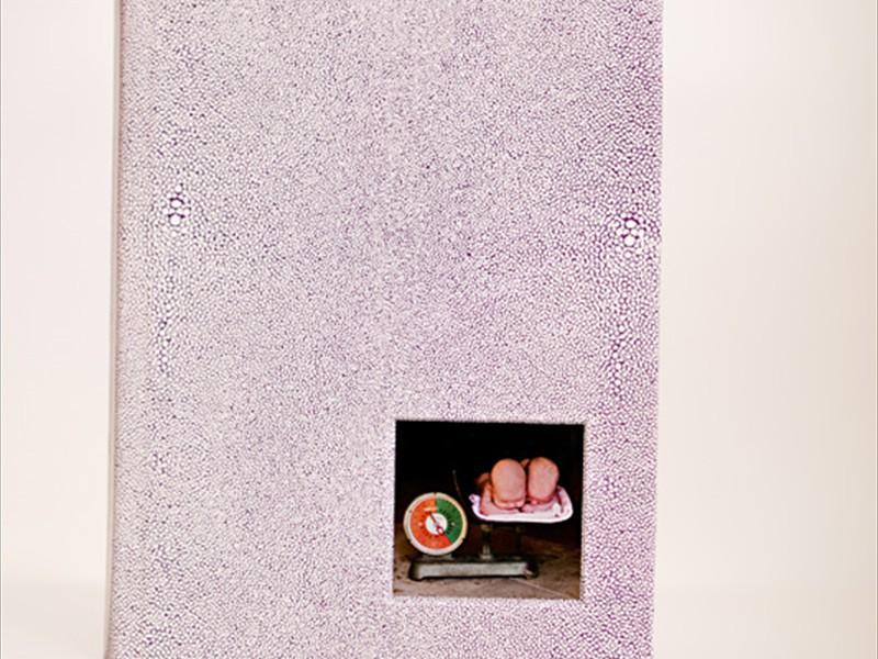 aluminum cameo cover